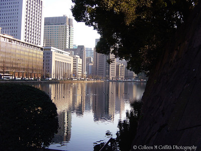 Hibiya Moat and Wall with the Tokyo skyline in the background, Japan