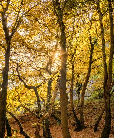 Autumn Hiking in Meteora