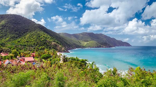 A Tropical Paradise