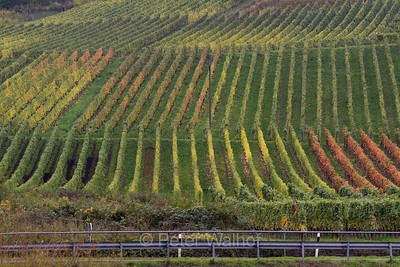 Travel - Mosel Germany