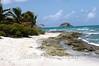Caribean