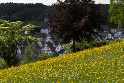 Travel - Siegerland Germany