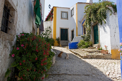 Street Scene, Walled City in Óbidos, Portugal