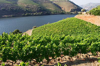 Douro River Valley, Portugal, Europe
