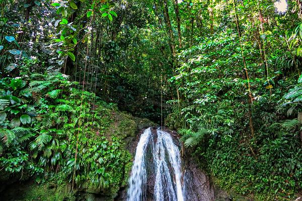 Cascade aux Ecrevisses, Basse-Terre