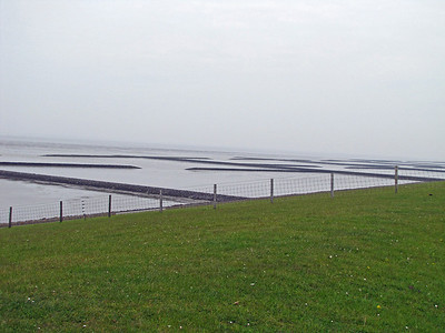 WATTENMEER National Park, North Sea (4)
