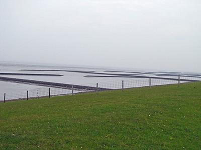 WATTENMEER National Park, North Sea (4)