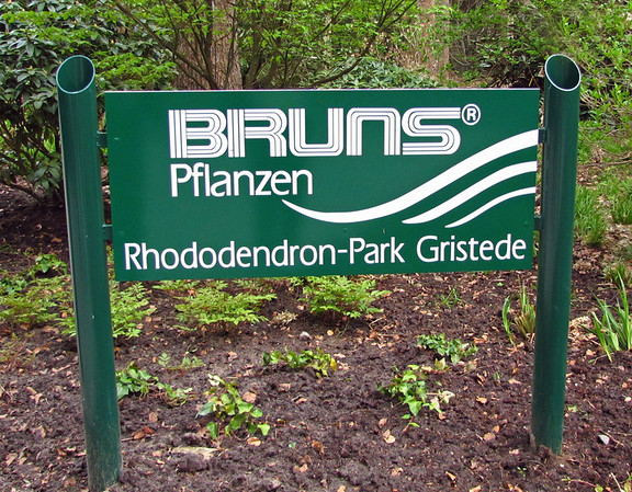 Rhododendron Park (4)