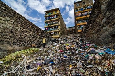 A woman walks past cattle in a massive trash pile in Mathare, a slum and home to 500,000 people in Nairobi, Kenya.