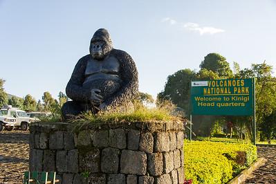 Rwanda's Volcanoes National Park.