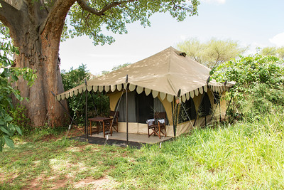 My tent under a Baobab Tree