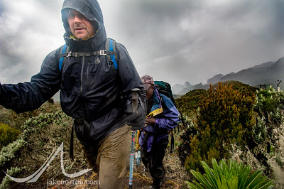 Ned Breslin navigating mud on the Kilembe Trail, Rwenzori Mountains, Uganda.