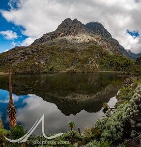 Peak reflected in Kitandara Lake en route to Camp 5 on the Kilembe Trail, Rwenzori Mountains, Uganda.