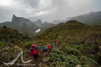 The Challenge21 team makes its way toward Camp 3 on the Kilembe Trail, Rwenzori Mountains, Uganda.