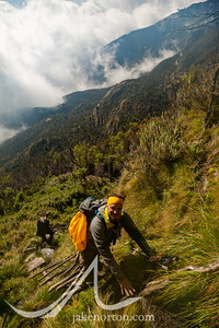Ned Breslin climbs a makeshift ladder above Camp 4 on the Kilembe Trail, Rwenzori Mountains, Uganda.