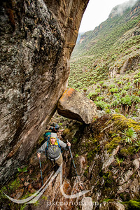 Ned Breslin works his way up a waterfall trail en route to Bamwanjara Pass on the Kilembe Trail, Rwenzori Mountains, Uganda.