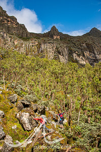 Dan Fillipi makes his way through the mossy boulder field above Kachope Lakes no the Kilembe Trail, Rwenzori Mountains, Uganda.