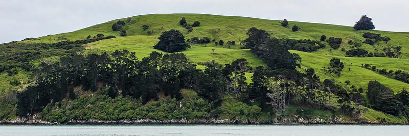 Akaroa, New Zealand, November 11, 2012