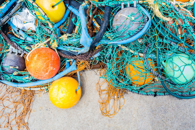 Fishing Net, Akaroa, New Zealand