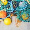 Fishing Net, Akaroa, New Zealand