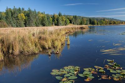 Beluga Lake, Homer IMG_8369