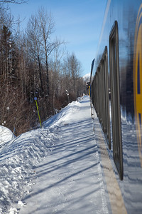 Alaska Railroad IMG_4730