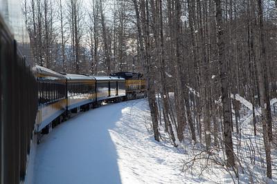 Alaska Railroad IMG_4774