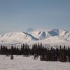 Alaska Railroad Scenic (Denali) IMG_4809