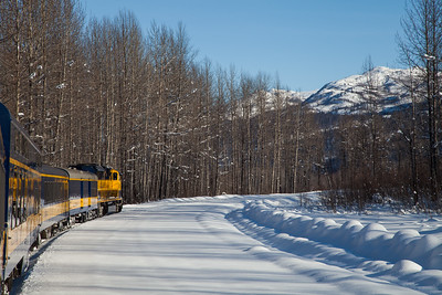 Alaska Railroad IMG_4753