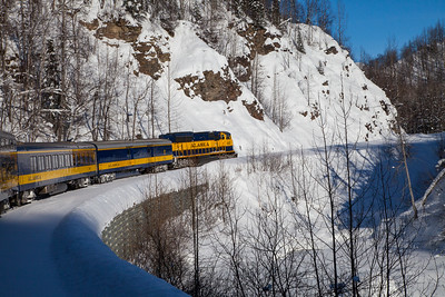 Alaska Railroad IMG_4780