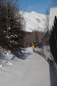Alaska Railroad IMG_4769