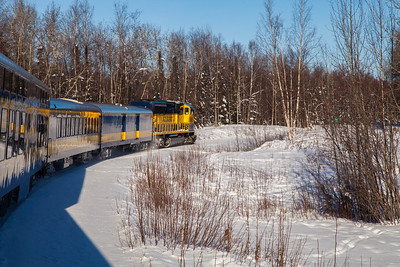 Alaska Railroad IMG_4713