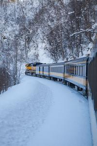 Alaska Railroad IMG_4779