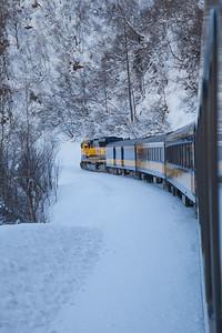 Alaska Railroad IMG_4778