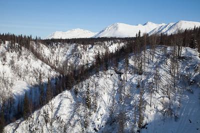Alaska Railroad @ Hurricane Gulch IMG_4816