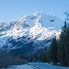 Exit Glacier Road, Seward, AK IMG_4958