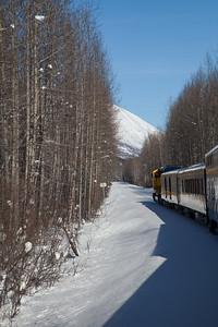 Alaska Railroad IMG_4773