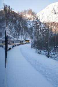 Alaska Railroad IMG_4776