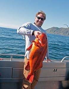 20 pound plus Yelloweye Rockfish