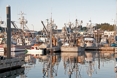 Kodiak boat basin