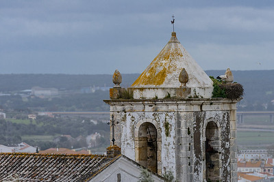 Nestings Storks near Pousada Alcacer do Sal