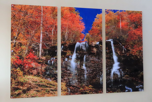 Amicalola Falls SP, GA (3)