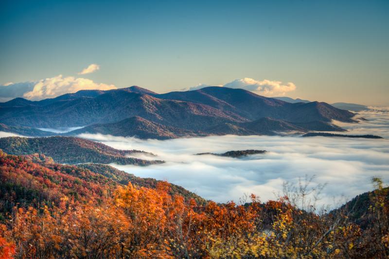 Fall Fog 2
