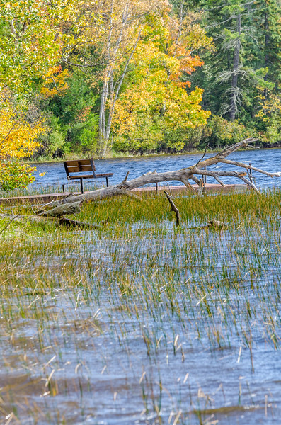 Copper Falls State Park Park Bench at Loon Lake