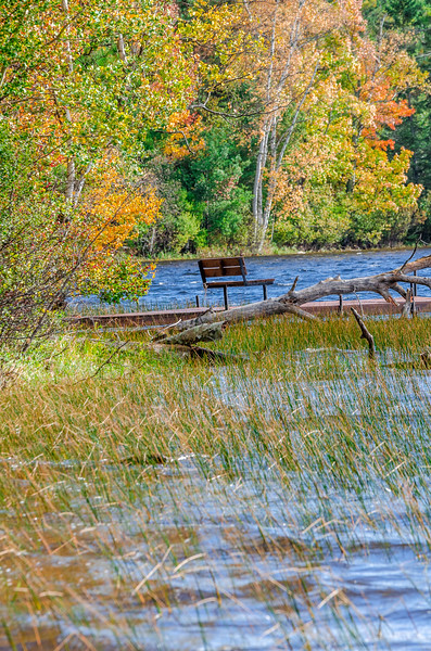 Copper Falls State Park Loon Lake Bench
