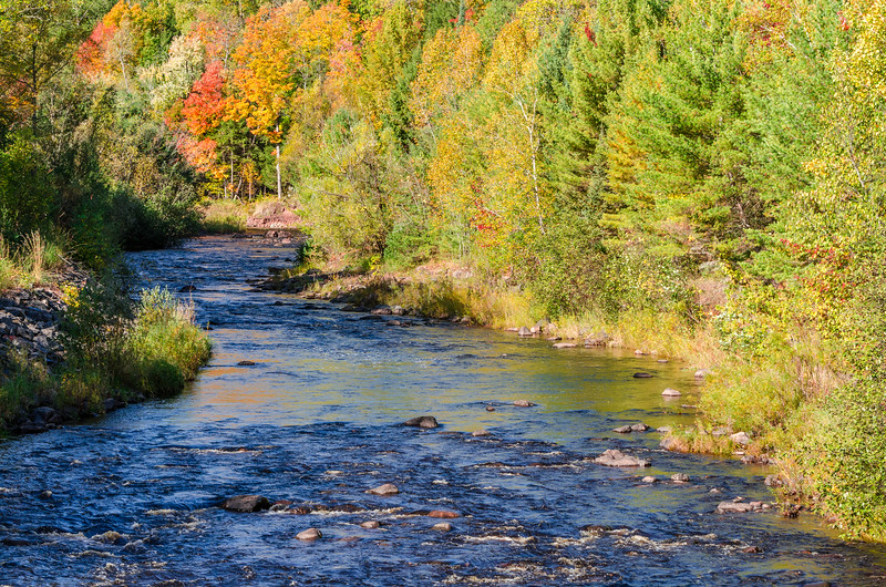 Northern Wisconsin Stream and Fall Colors