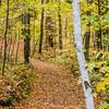 Copper Falls State Park Hiking Trail
