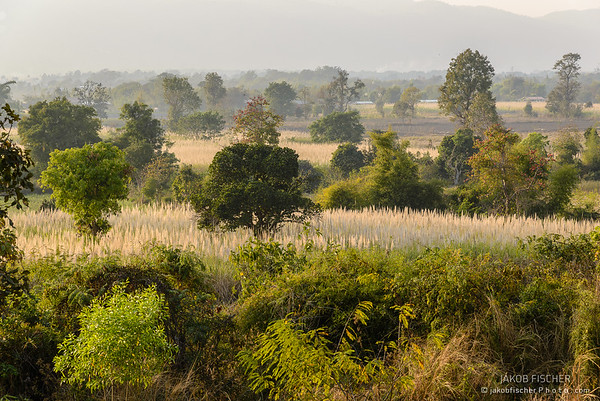 Landscape around Inle Lake