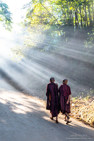 burmese monk in Mrauk U