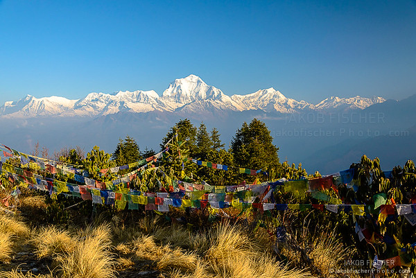 Annapurna summit with view from Poonhill, tibetan praying flags in the front, Nepal